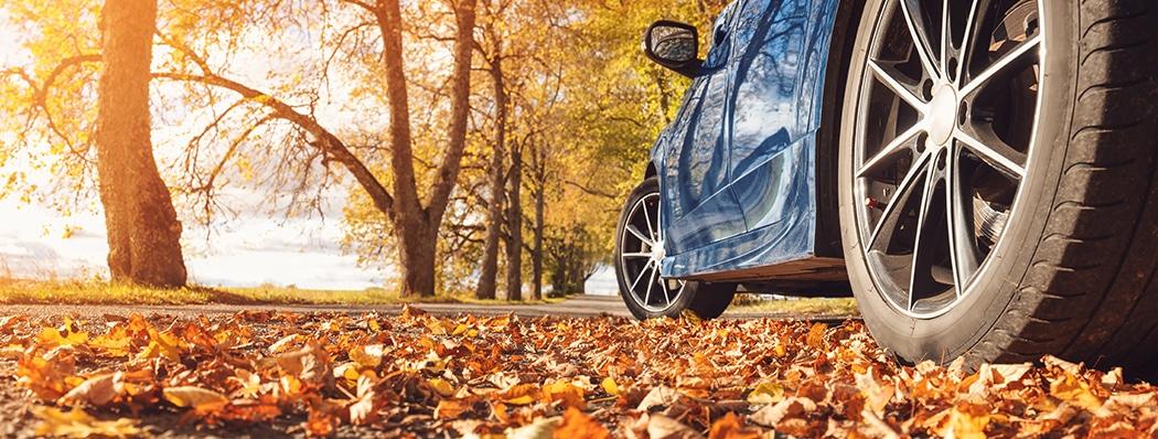 bandenspanning in de herfst _ DONROX